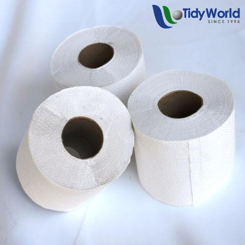 Virgin Toilet Paper 1 Ply Tidy World